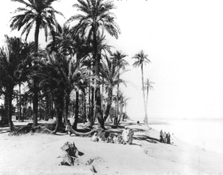 Sebah, J. P., Egyptian countryside (c.1890