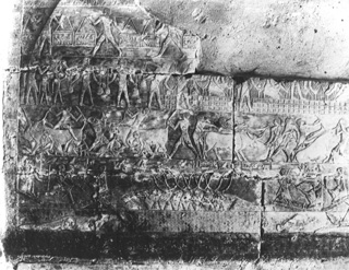 Zangaki, G., Saqqara (c.1890
