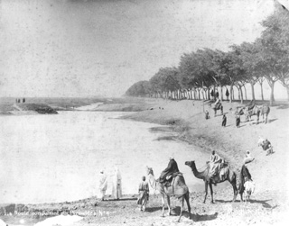 Abdullah Frères, Giza (c.1880