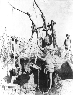 Zangaki, G., Irrigation devices (c.1890