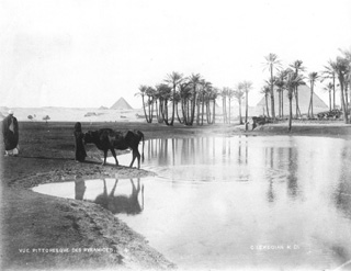 Lekegian, G., Giza (c.1890
