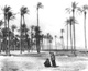 Click to see details of a woman and child in a palm grove, with...