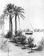 Click to see details of view of the nile at bulaq.