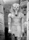 Click to see details of upper part of a colossus of ramesses...