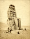 Click to see details of the northern colossus of amenophis iii...